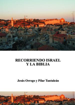 Recorriendo Israel y la Biblia