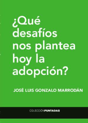 ¿Qué desafíos nos plantea hoy la adopción?
